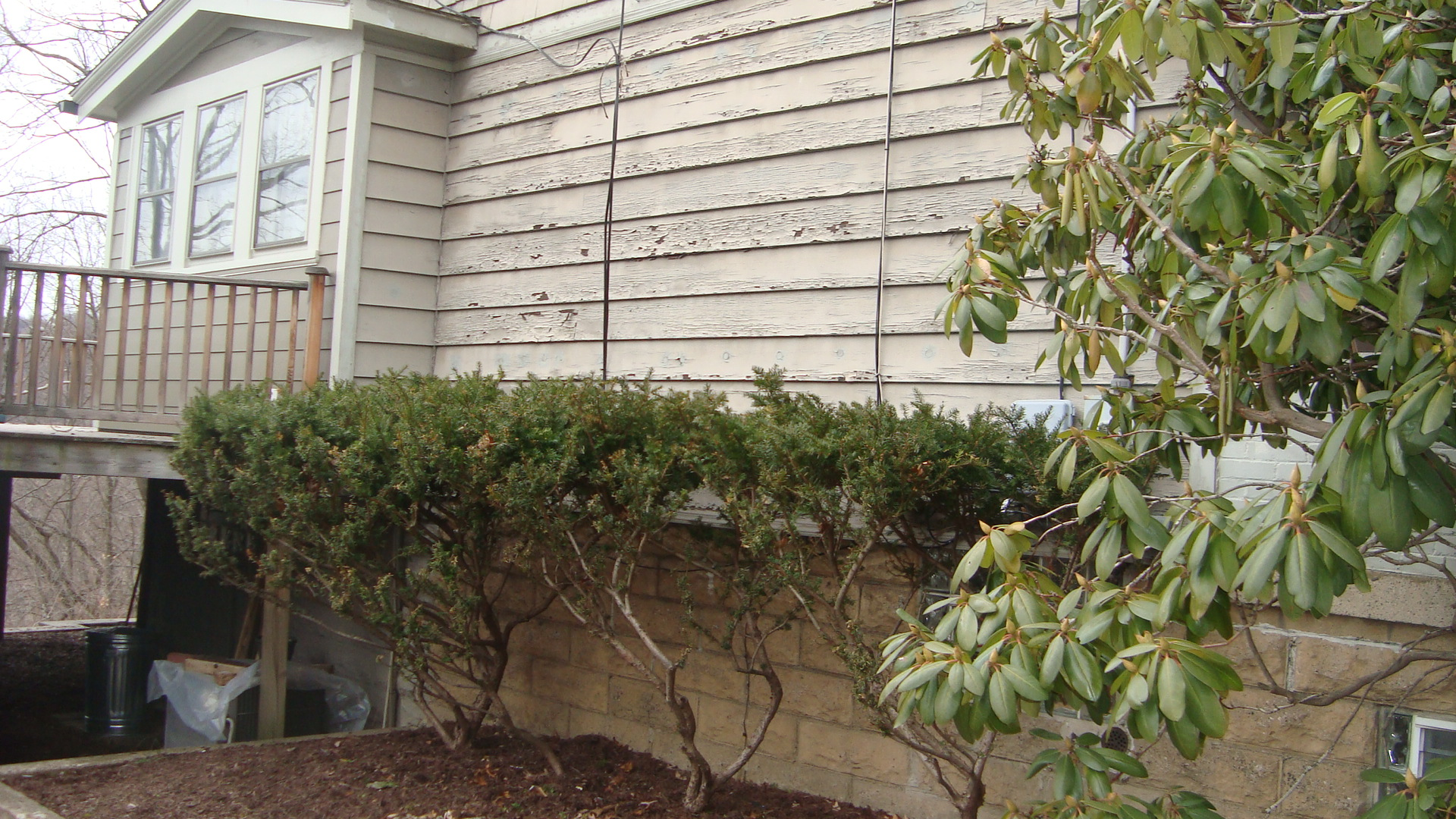 Before picture of home siding